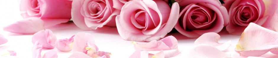 cropped-valentines-day-2014-roses-hd-wallpaper-for-desktop-background.jpg